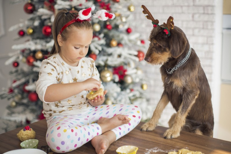 5 Holiday Foods That Are Dangerous to Pets