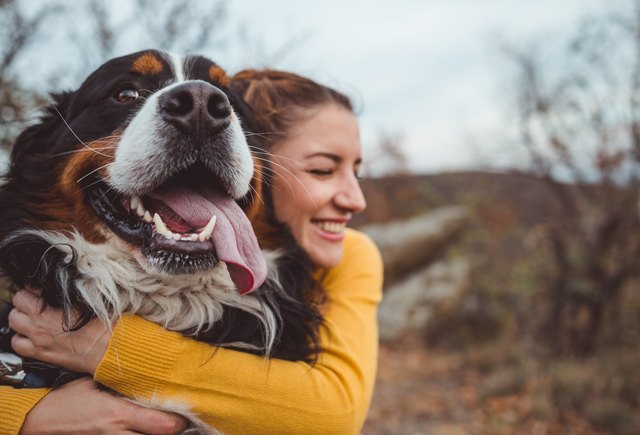 8 Tips That Could Lengthen Your Dog's Life
