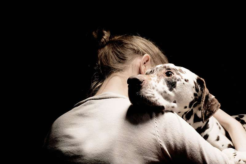 Can Dogs Fake Emotions?